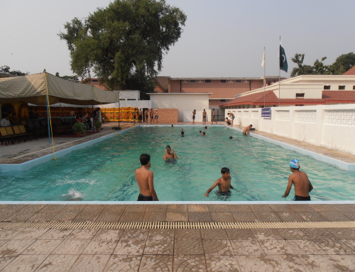 Swimming Gala 5