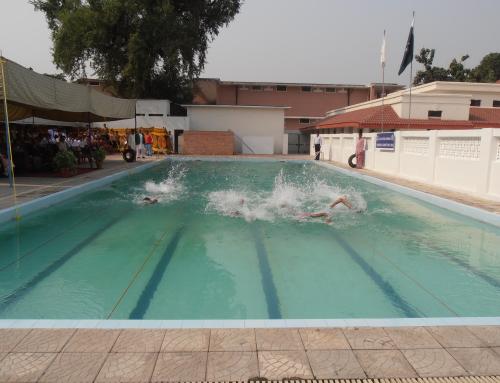 Swimming Gala 4